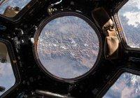 Биореактор для выращивания клеток в космосе тестируют в России