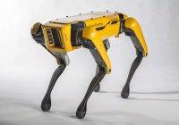 Роботы Boston Dynamics прокатили грузовик (ВИДЕО)