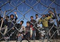 Власти Бельгии будут «отговаривать» мигрантов искать убежище в стране