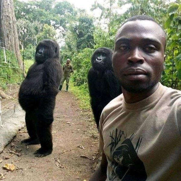 Новая фотография профиля Матье Шамаву в социальной сети Facebook моментально разошлась по Сети