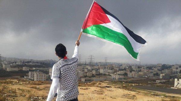 Декларация ЛАГ по Палестине.