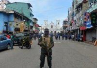 Россиян призвали отказаться от поездок в Шри-Ланку