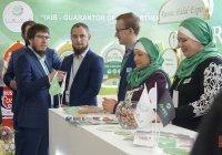 На KazanSummit обсудили выработку национального стандарта «Халяль»