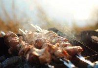 В России разрешили жарить шашлыки на природе