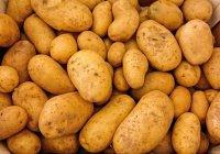 В Австрии отапливают дома картофельной кожурой
