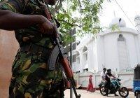 Россиян призвали избегать многолюдных мест в Шри-Ланке