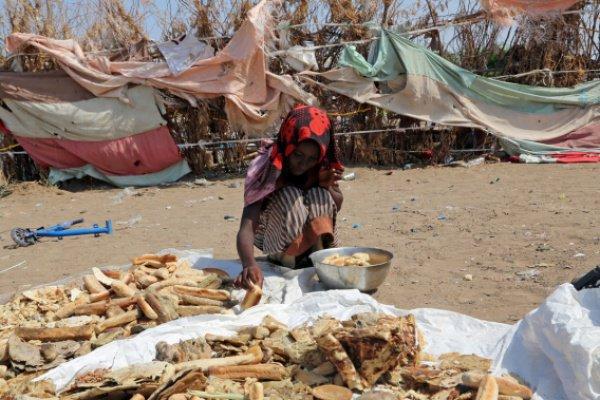 Миллионы жителей Йемена страдают от голода.