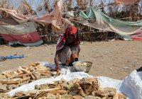 ООН: на помощь голодающим в Йемене не хватает $4,2 млрд