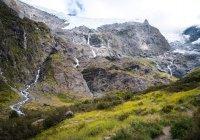 В Новой Зеландии обнаружили уникальные окаменелости следов моа