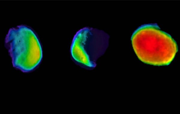 На изображениях поверхность Фобоса, осуществляющего оборот вокруг Красной планеты за 7 часов 39 минут 14 секунд, выглядит многоцветной