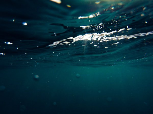 Ежегодно мусора в океанах становится все больше