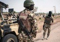 В Нигере в засаде террористов погибли десятки военных