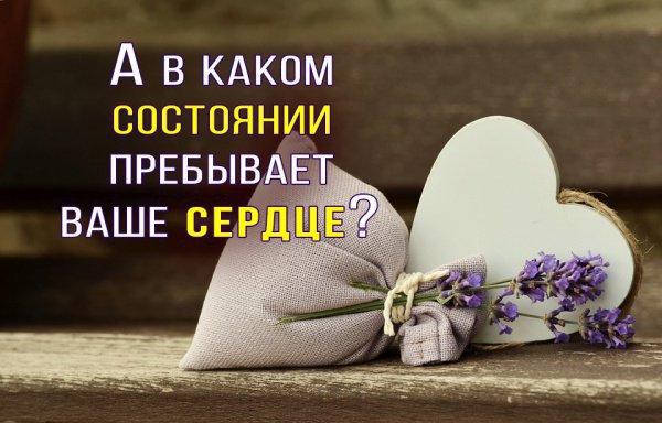 """Как оживить """"мертвое"""" сердце?"""