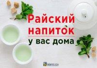 Райское меню: напиток, которым будут угощать обитателей РАЯ