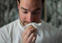 Названа самая распространенная в России аллергия