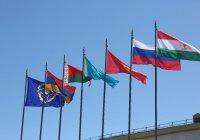 В ОДКБ обеспокоены учениями НАТО у границ организации