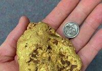 Уникальный золотой самородок найден в Австралии