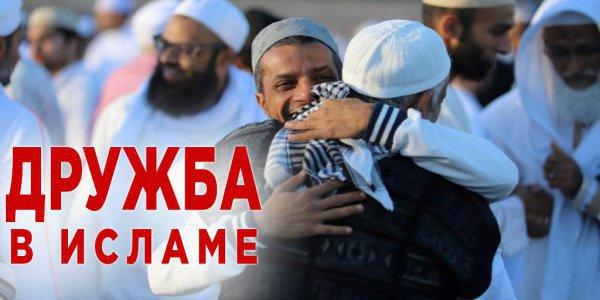 Запрещает ли Коран дружить с немусульманами?
