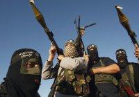 У границ СНГ насчитали 5 тысяч террористов