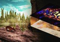 Палеонтологи научились превращать окаменелости в «цветные» фото