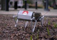 В США четвероногий робот научился делать сальто (ВИДЕО)