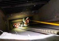 В Китае 6-летний мальчик упал с 23-го этажа и выжил