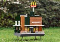 «Макдоналдс» для пчел появился в Швеции (ФОТО)