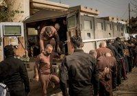 В Ираке трое французов приговорены к смертной казни за участие в ИГИЛ