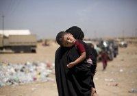 Иракские власти передали Турции около 200 детей боевиков ИГИЛ