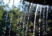 В Калининграде забил зеленый фонтан (ВИДЕО)