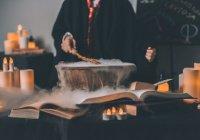 Джоан Роулинг выпустит 4 новые истории про Гарри Поттера
