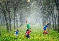 Как сделать Ураза-байрам незабываемым для детей?