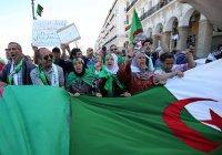 В Алжире перенесли президентские выборы из-за отсутствия кандидатов
