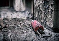 На Украине задержали мужчину по подозрению в подготовке теракта
