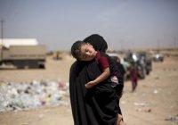 Курды передали Франции и Нидерландам детей ИГИЛ
