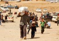 С начала года в свои дома вернулись более 200 тысяч сирийцев