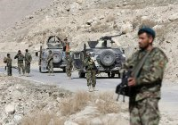 50 человек освободили из тюрем «Талибана» в Афганистане