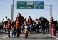 В Турции заявили о плюсах миграции для экономики