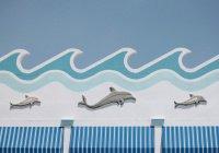 В Канаде запретили содержать в неволе китов и дельфинов