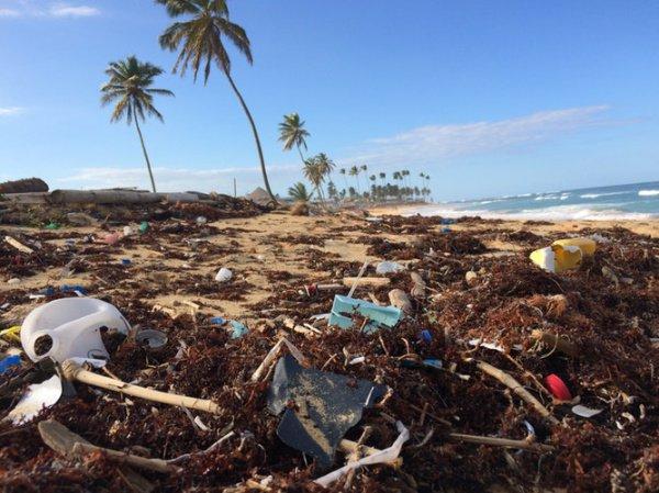 Расчеты провели на базе предполагаемых данных о том, что в океан попали порядка 6,3 тыс. тонн отходов из разных портов Страны восходящего солнца
