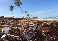 Выяснилось, как пластиковый мусор попадает из Японии в другие страны