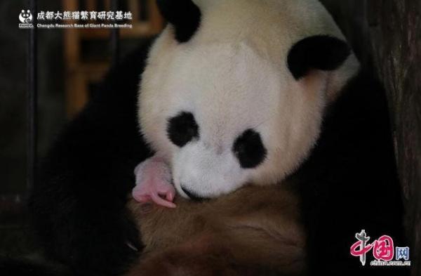 Фото © china.com.cn