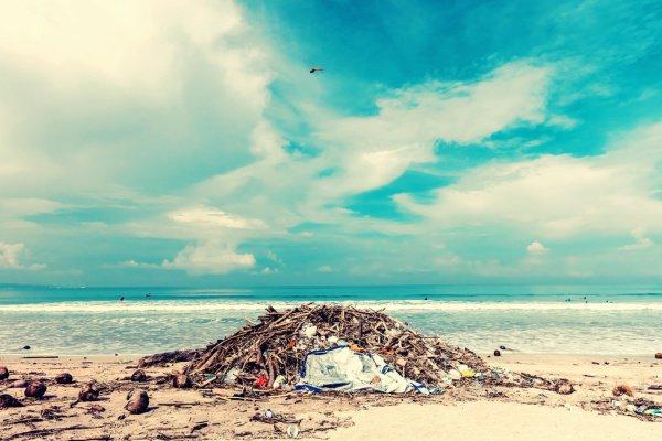 История молодых людей началась, когда они отправились покататься на серфе на один из «самых крутых нетронутых пляжей» мира