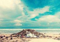 В США 2 серфера собрали более 2 млн. кг мусора в океане