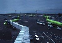 В Москве в аэропорту появились алкорамки