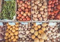 Стало известно, к чему ведет отказ от овощей и фруктов