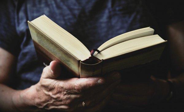 Каждая сказка учит нас обычной человеческой морали