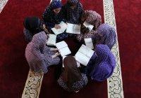 Ислам: союз веры и знания