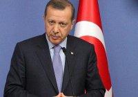 Власти Египта обвинили Эрдогана в связях с террористами