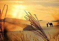 5 уроков из путешествия Муаза ибн Джабаля в Йемен